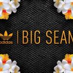 Big Sean x Adidas Originals