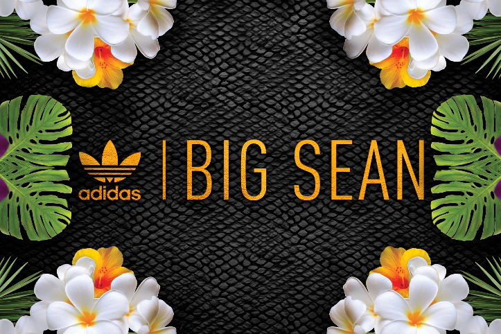 Big Sean x Adidas Originals