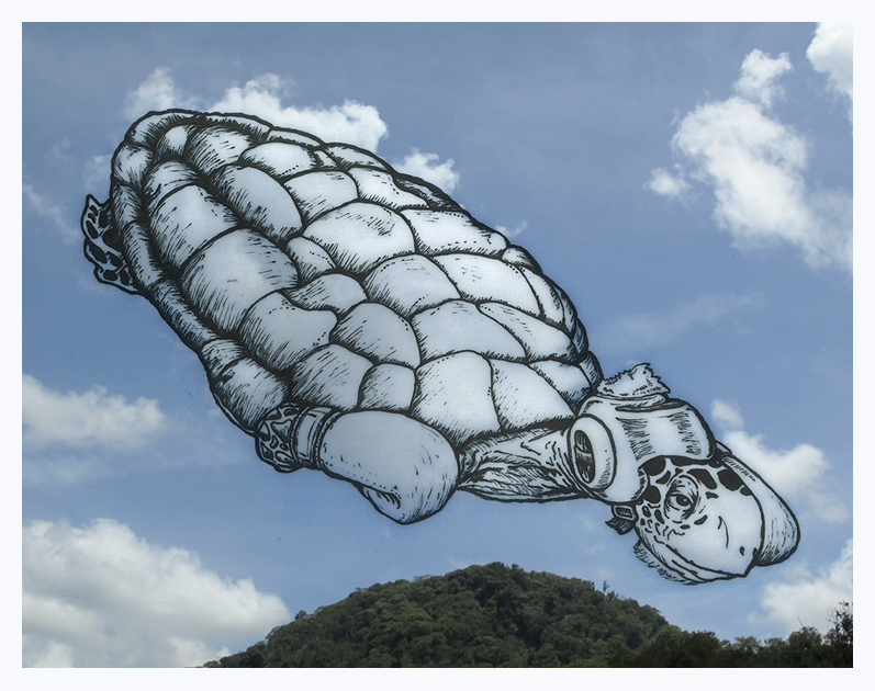 Martín Feijoó Shaping Clouds Boxing Turtle