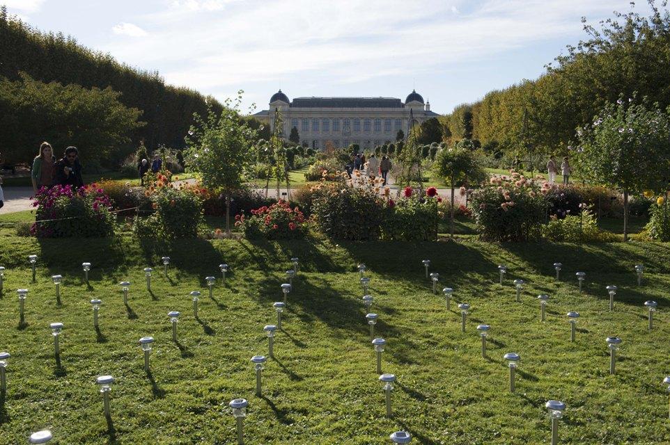 FIAC 2014 Parcours d'œuvres Jardin des Plantes