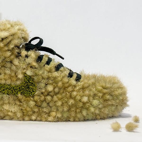 shoe_grasshopper_instagram