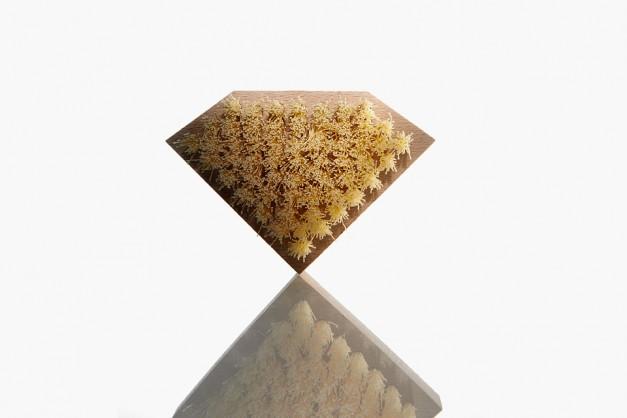 jason-markk-diamond-supply-co-6-960x640-627x418