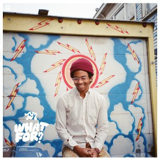 Toro Y moi what for cover