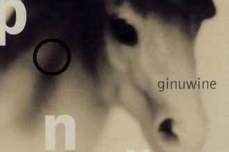 pony-remix