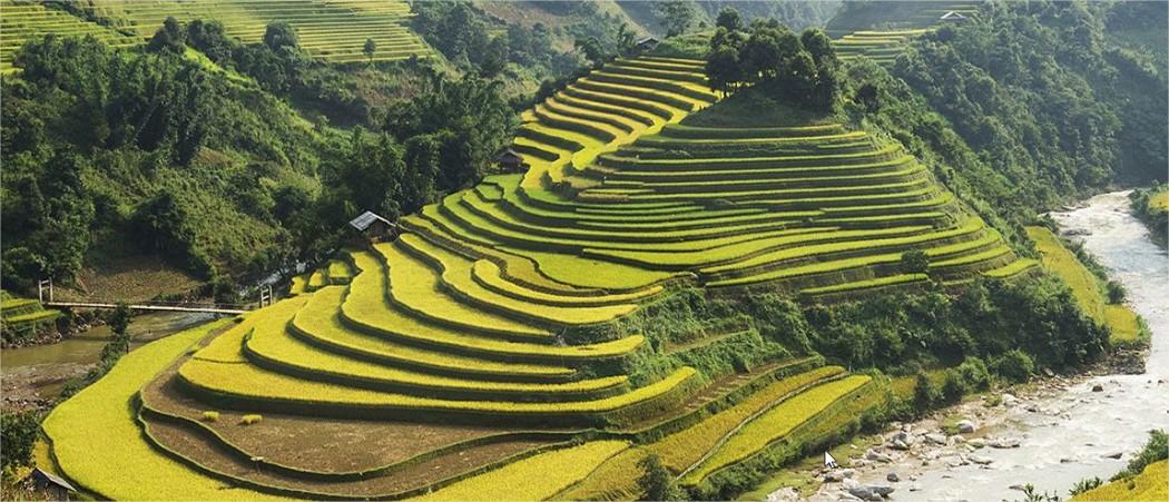 Le Vietnam, nouvelle destination tendance !