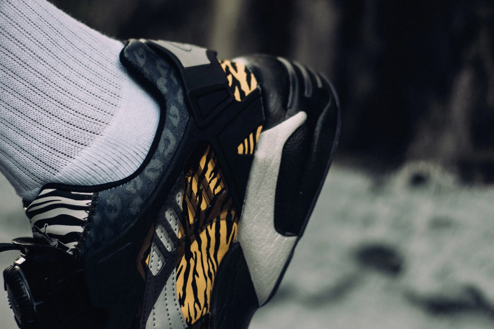 phantaci-puma-disc-blaze-king-of-monster-4
