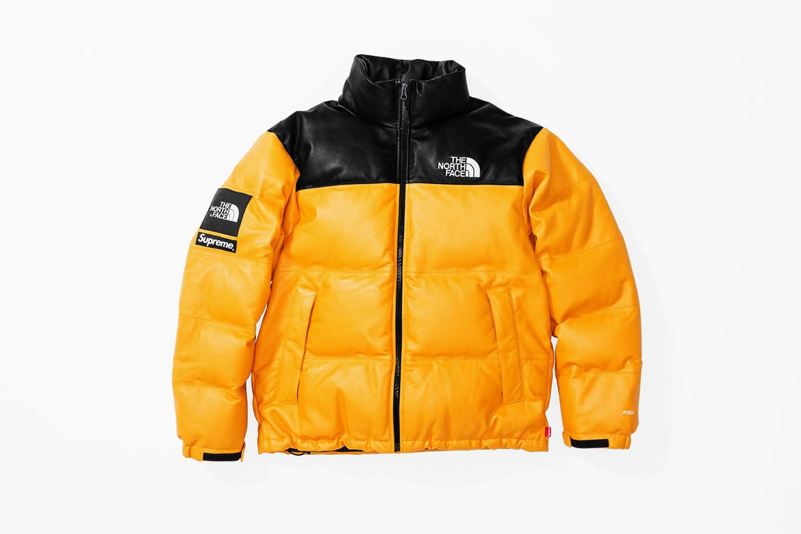 supreme the north face