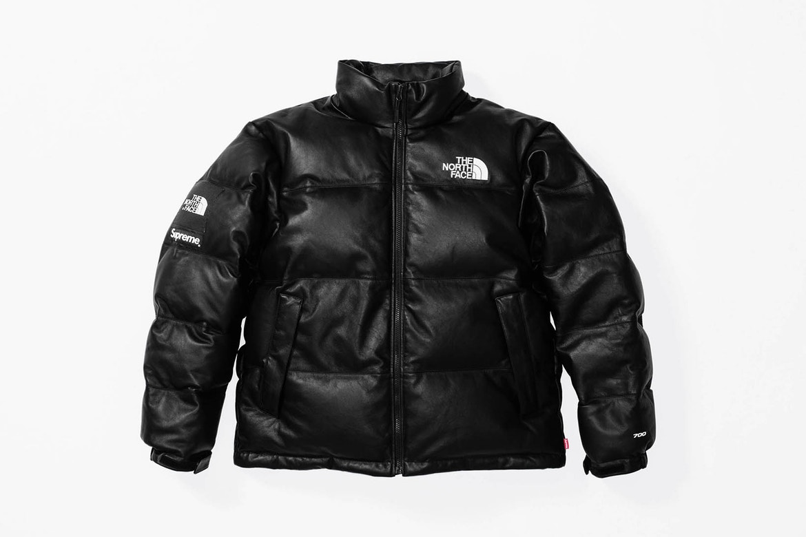 supreme the north face4