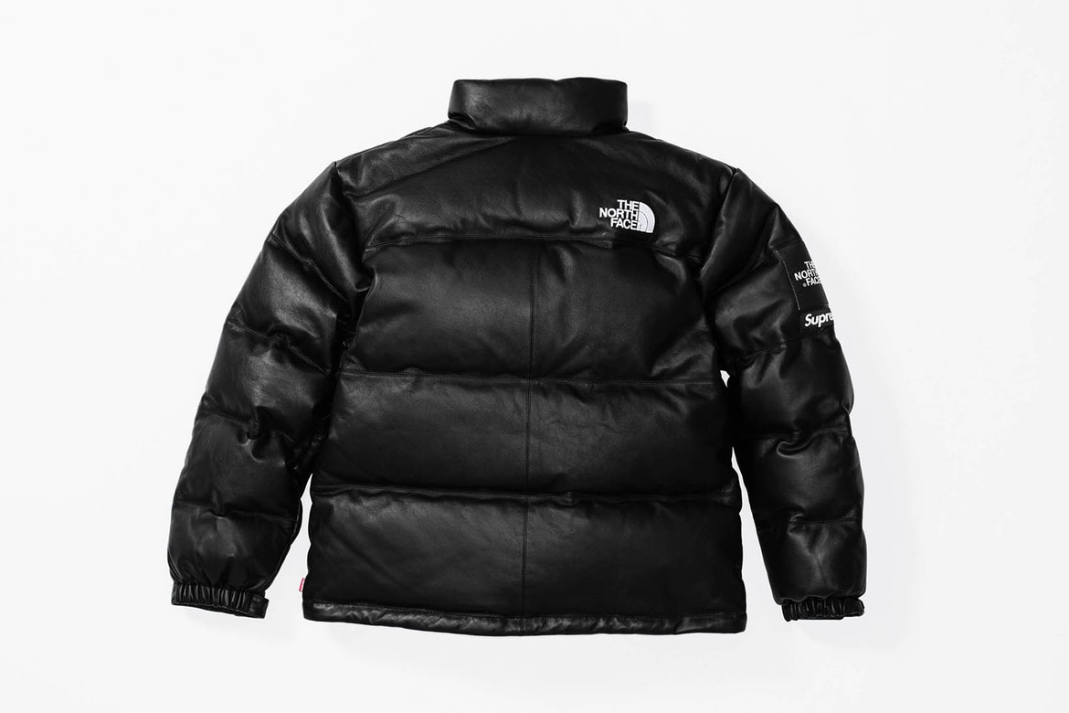 supreme the north face5