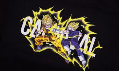 CARNIVAL x Dragon Ball Z livrent une collection capsule collector